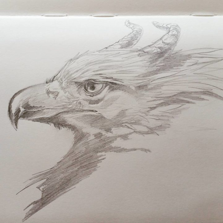 Griffin Study